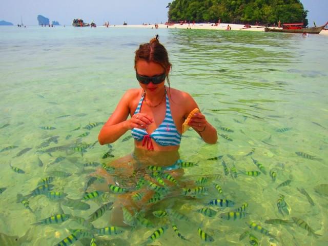 рыбки Таиланд