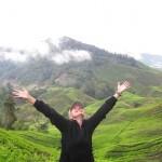 Малайзия достопримечательности – Камерон Хайлэндс, высокогорье Малайзии